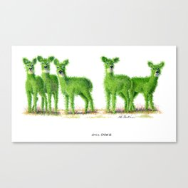 Dill Does Canvas Print