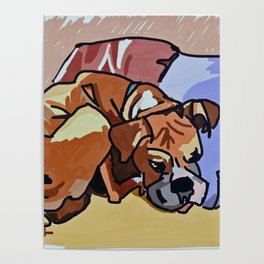 Abby Rests Boxer Dog Portrait Poster