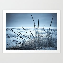 Blue Beachscape Art Print