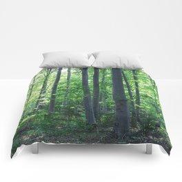 morton combs 02 Comforters