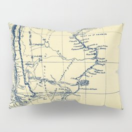 Patagonia - Blue Vintage Pillow Sham