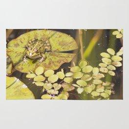 frogger... Rug