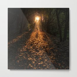 Autumn Fantasy : Let the Light Guide You Metal Print