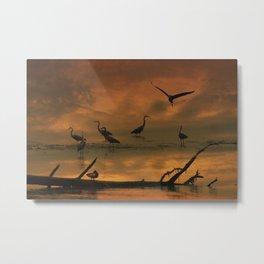 Herons at Sunset II Metal Print