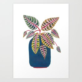 Potted Prayer Plant Art Print