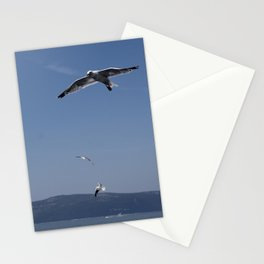 Fly Fly Stationery Cards