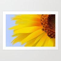 petals of the sun Art Print