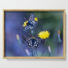 The Checkerspot Couple Serving Tray