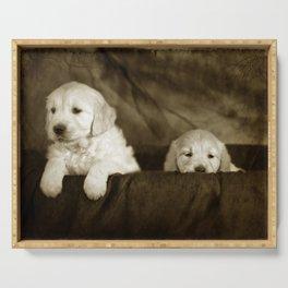 Labrador puppies Serving Tray