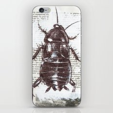cockroach iPhone & iPod Skin