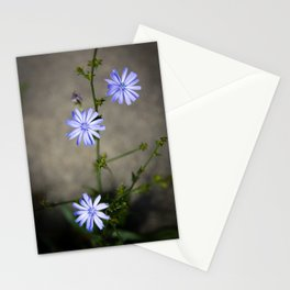 Chicory In The Concrete Jungle Stationery Cards