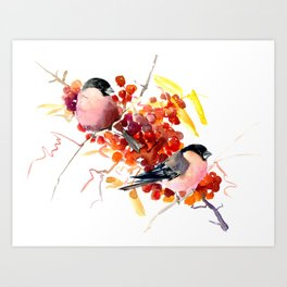 Bullfinch and the Fall Art Print