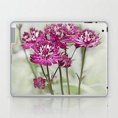 Pink Flowers in the Mist Laptop & iPad Skin