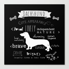 Dachshund black and white Canvas Print