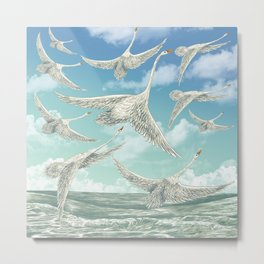 Sea Swans Metal Print