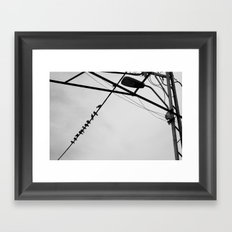 Chatter Framed Art Print