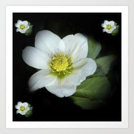 elegant flower design -3- Art Print