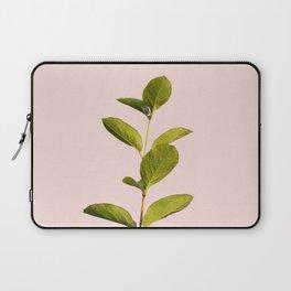 Botanica Art V3 #society6 #decor #lifestyle #fashion Laptop Sleeve