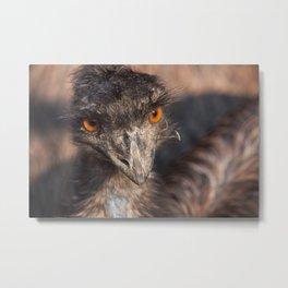 Emu close-up Metal Print
