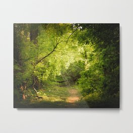 The Secret Path Metal Print