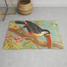 Toco Toucan Birds of the Tropics Series by A&G Rug