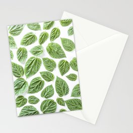 Leaves pattern (28) Stationery Cards