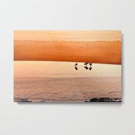 Seagull Huddle Metal Print