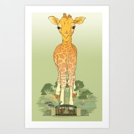 Big Publicity for a Baby Giraffe Art Print