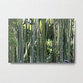 Bamboo zen calm Metal Print