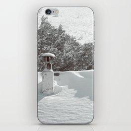 it's winter iPhone Skin