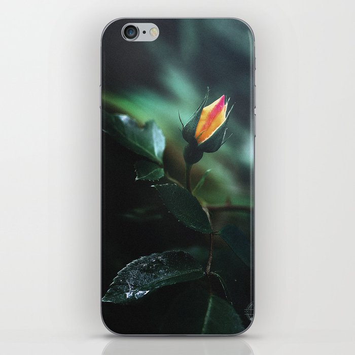 The voice of beauty iPhone Skin