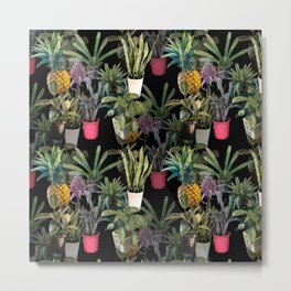 Home jungle picture on black from my own garden for planty people Metal Print