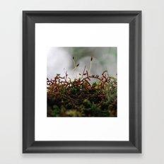 Miniscule World Framed Art Print