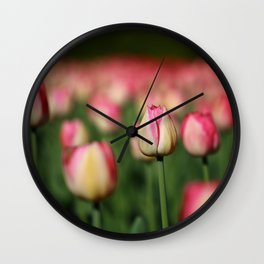 Field of Pink and Yellow Tulips in Spring Wall Clock