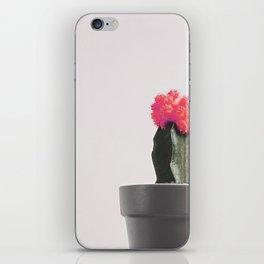 Pink Cactus Bloom iPhone Skin