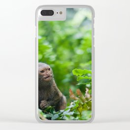 Pair of pygmy monkeys Clear iPhone Case
