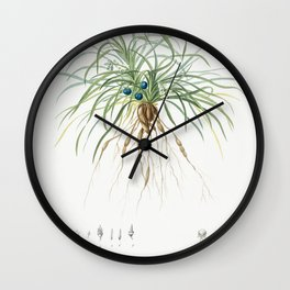 Convallaria japonica  from Les liliacees (1805) by Pierre-Joseph Redoute Wall Clock