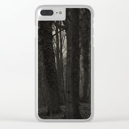 Winterscenery Clear iPhone Case