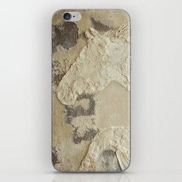 Horse in Stone iPhone Skin