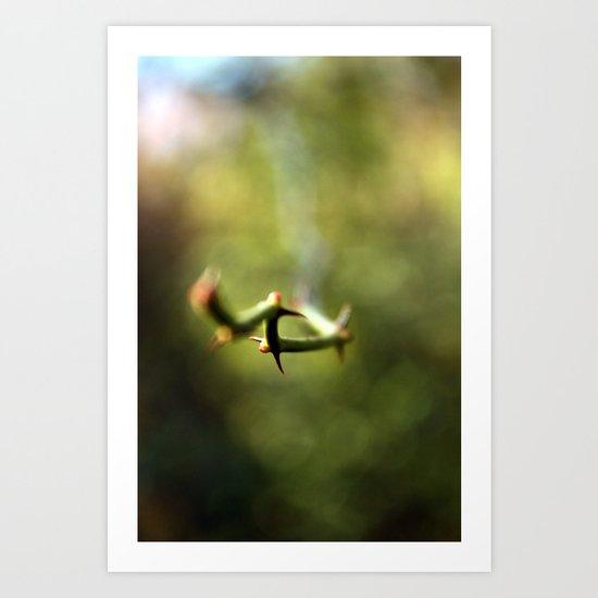 Thorns Art Print