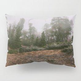 BIG BEAR Pillow Sham