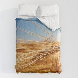 treasures of summer Comforters