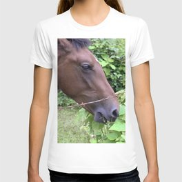 Tropical Island Horse Eating Leafy Lunch T-shirt