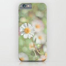 Sunbathing Daisies iPhone 6 Slim Case
