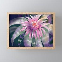 Tropical One Framed Mini Art Print