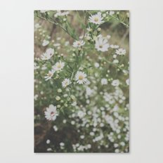 wildflowers. Canvas Print