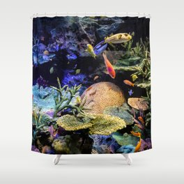 Brain Coral and Bright Colours Shower Curtain