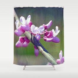 Redbud Flowers Shower Curtain