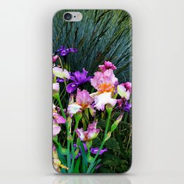 SPRING GARDEN & PURPLE-WHITE-YELLOW IRIS iPhone Skin