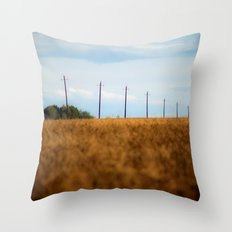 Perspective 4956 Throw Pillow